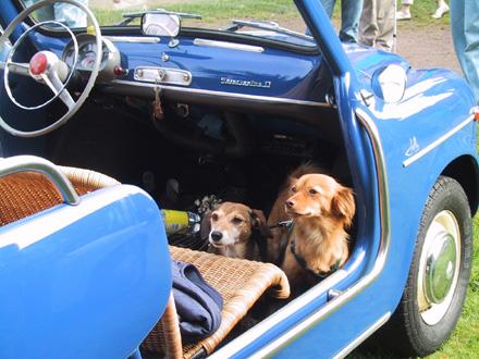 So ein Fiat Jolly ist was Feines bei sommerlichen Temperaturen.